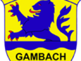 TSV Wappen 4cmnsp 227 Links